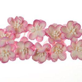 Цветки вишни, Розовый с белым