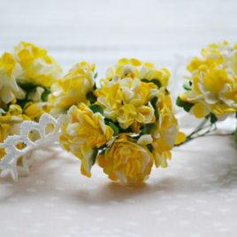 Цветы астры, Желто-белые