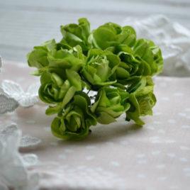 Цветы крупные розы, Салатовые