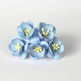 Цветы вишни Голубые