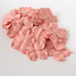 Гортензии большие Розово-персиковые