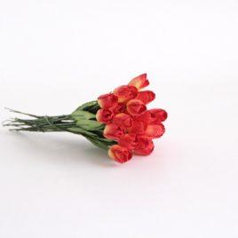 Тюльпаны Красно-желтые