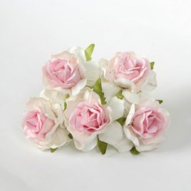 Кудрявые розы Бело-розовые