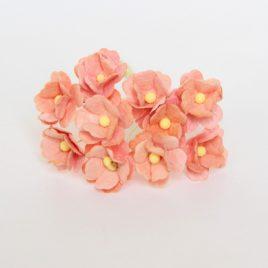 Цветы вишни средние Розово-персиковые
