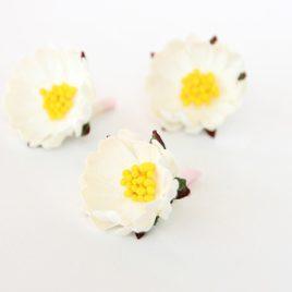 Бумажные цветы шиповник Белые