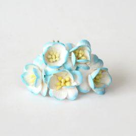 Цветы вишни Бирюзово-белые
