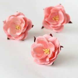 Дикие Розы Розово-персиковые