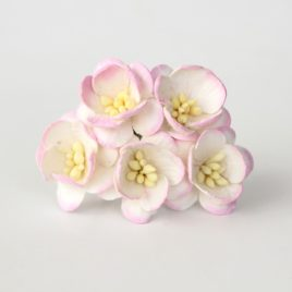 Цветы Вишни Розово-белые